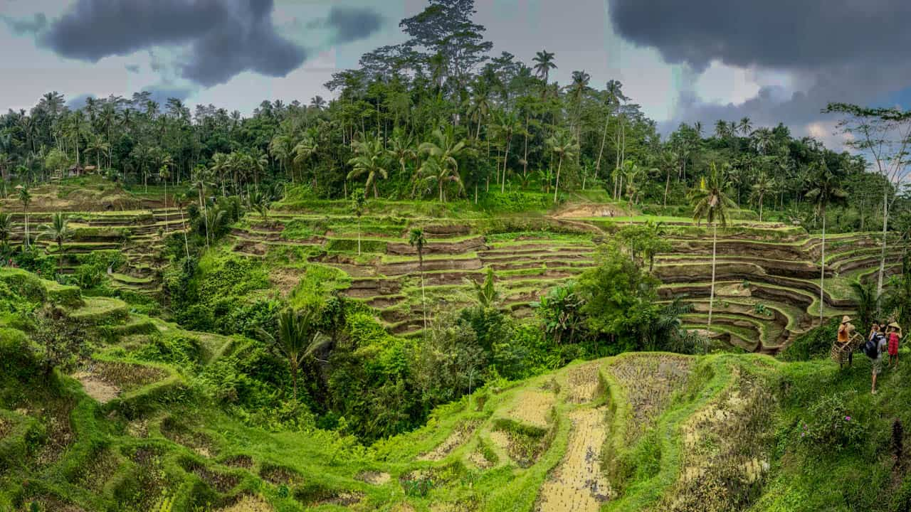 Indo-Quickie Teil 3: Ubud und Umgebung